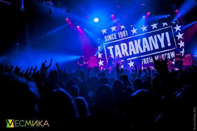 tarakany-3-iz-52